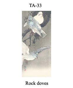 33-sozan-thumb-TA-33-Rock-doves