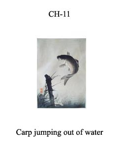 CH-11 Carp Jumping Out Of Water