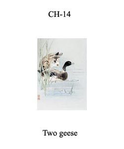 CH-14 Two Geese