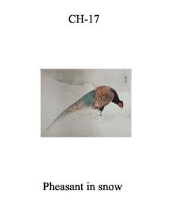 CH-17 Pheasant In Snow