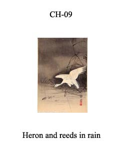 CH-9 Heron And Reeds In Rain